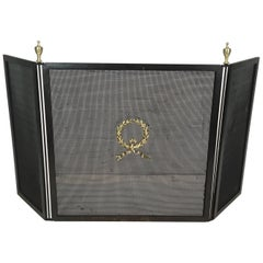 Neoclassical Steel, Bronze, Brass and Grilling Fire Place Screen, French