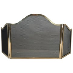 Antique And Vintage Fireplace Screens 278 For Sale On 1stdibs