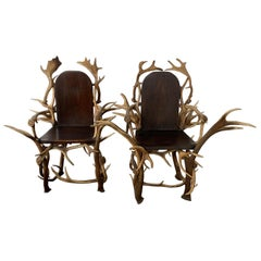 Pair of Antler Armchairs, 1920s