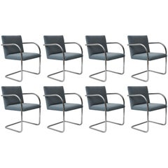 Set of Eight Knoll Tubular Brno Chairs by Mies van der Rohe