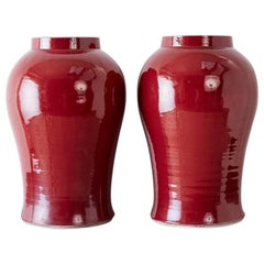 Pair of Chinese Sang de Boeuf Glazed Oxblood Vases