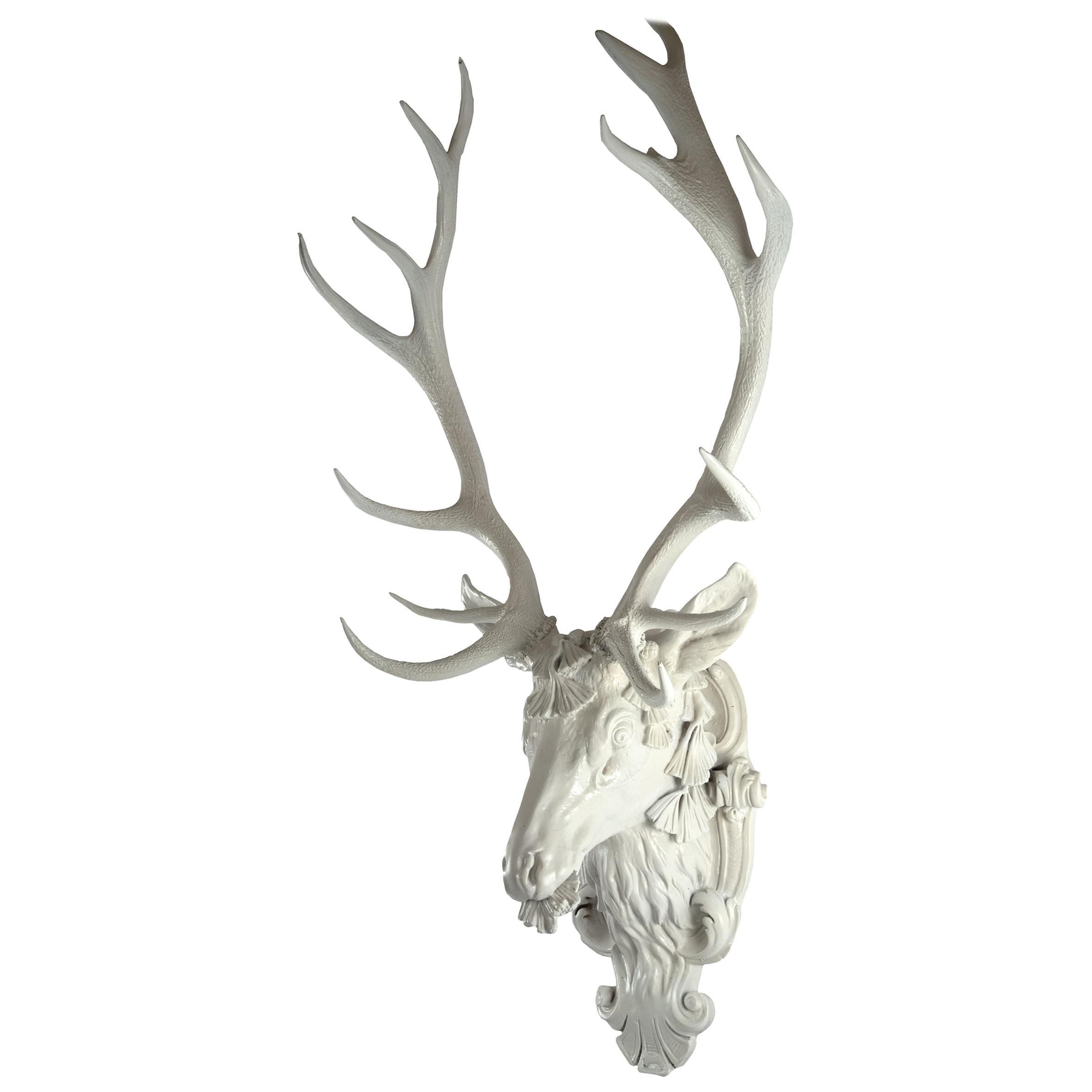European Red Deer Stag Head