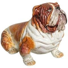 Grand Terracotta Bull Dog