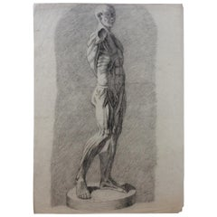 Antique Anatomical Drawings Male Nudes, Collection of 4