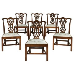 Set of Six 18th Century Chippendale Period George III Mahogany Chairs