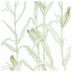 Corn Rows in Summer Green on Smooth Paper