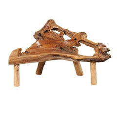 Teak Root and Limb Bench with Angular Shape and Live Edges
