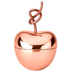 Ghidini 1961 Knotted Cherry Small Box in Copper-Plated Brass by Nika Zupanc