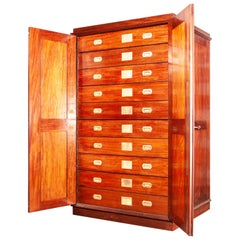 19th Century Mahogany Chest of Drawers or Cabinet, Natural History Museum