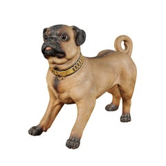 German Painted Terracotta Pug Sculpture with Playful Attitude and Gilt Collar
