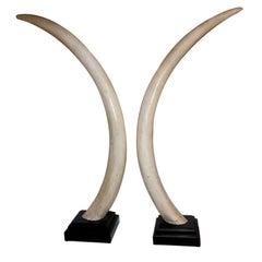 Life-Size Vintage Faux Elephant Tusks