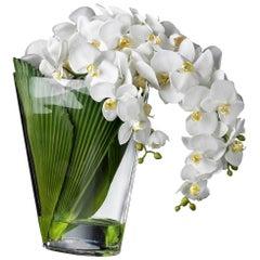 Eternity Phaleno Cascade Set Arrangement, Flowers, Italy