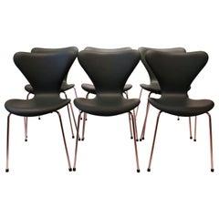 Set of 6 Seven Chairs, Model 3107, Dark Green, by Arne Jacobsen