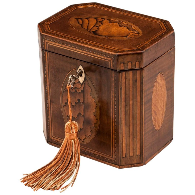 Antique Shell Inlaid Harewood Tea Caddy, 18th Century For Sale