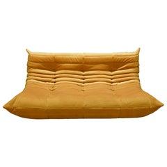 Togo 3-Seat Sofa in Golden Yellow Velvet by Michel Ducaroy for Ligne Roset