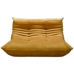Togo 2-Seat Sofa in Golden Yellow Velvet by Michel Ducaroy for Ligne Roset
