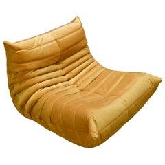 Togo Longue Chair in Golden Yellow Velvet by Michel Ducaroy, Ligne Roset