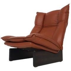 Leather and Wood Lounge Chair by Leolux, Dutch Modern Design, 1970s