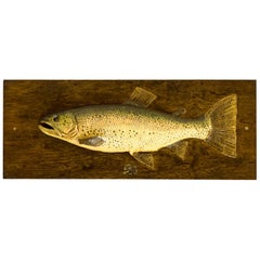 Edwardian Fishing Trophy Carved Half Block Model of a Rainbow Trout
