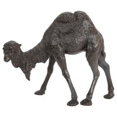 Asian Bronze of a Bactrian Camel