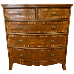French Art Deco Macassar Ebony Wood Tall Chest Dresser