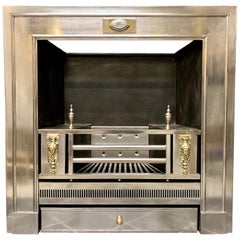 19th Century Regency Style Polished Steel Fireplace Insert