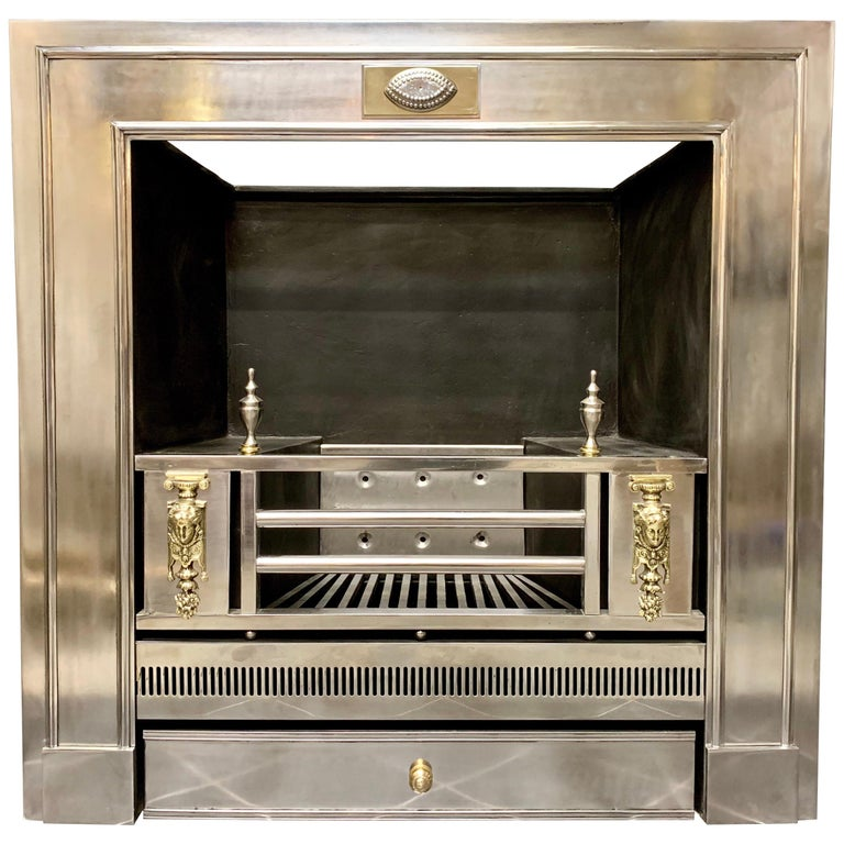 19th Century Regency Style Polished Steel Fireplace Insert For Sale
