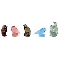 Paul Hoff for Svenskt Glas, 5 Birds in Art Glass, WWF
