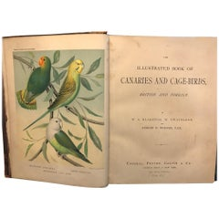 The Illustrated Book of Canaries and Cage-Birds, Britsh and Foreign