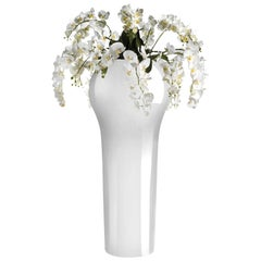 New Delhi Set Arrangement, Flowers, Vase, Indoor Use, Italy