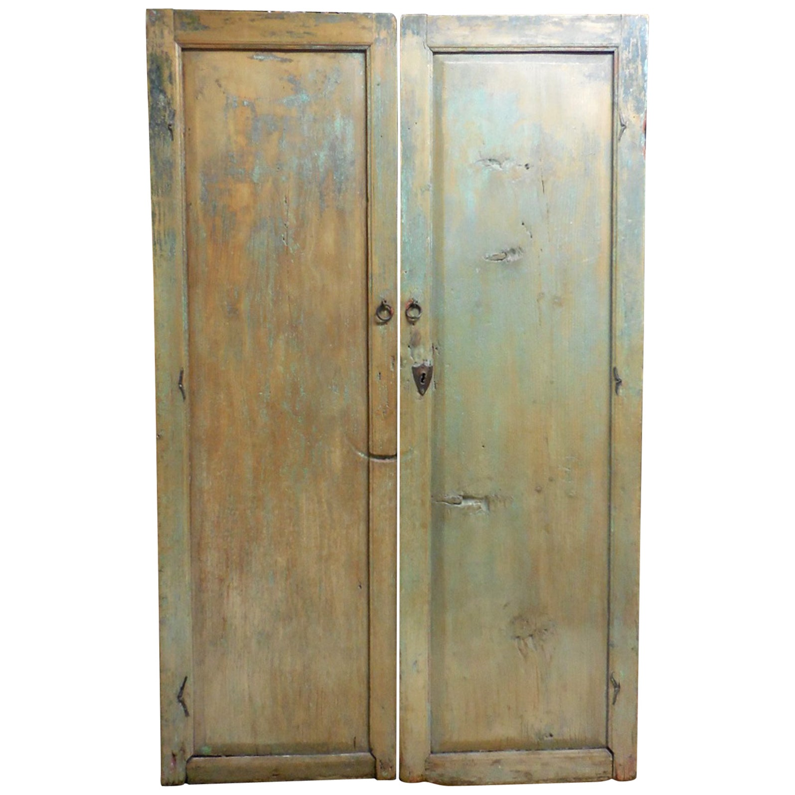 Pair of 19th Century Doors