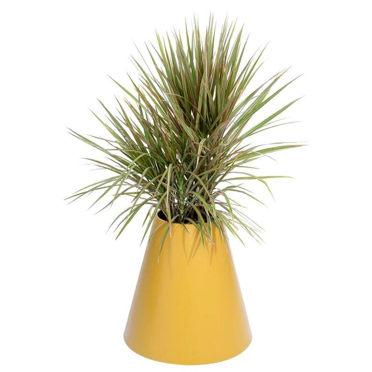 Cone Planter by Pieces, Yellow Fiberglass Planters For Sale