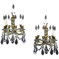 Beautiful Pair of Late 19th Century Gilt Bronze Crystal Seven Light Sconces