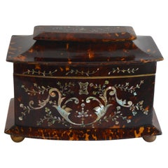 19th Century Tortoise Shell and Mother of Pearl Inlaid Tea Caddy