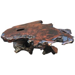 Vintage Cross Sectioned Tree Trunk And Root Coffee Table