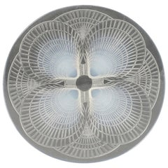 "Set of 11 René Lalique Opalescent ""Coquilles"" Pattern Plates"