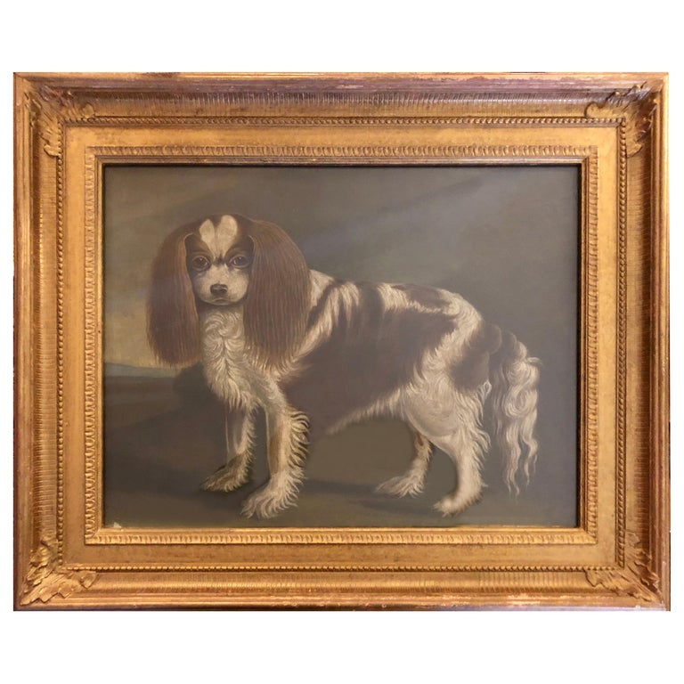 Portrait of a Cavalier King Charles Spaniel, oil on canvas, 20th Century  For Sale