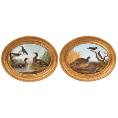 Pair of Oval Gouaches Figuring Birds in Nature, 19th Century