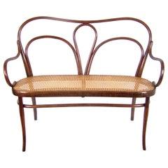 Art Nouveau Sofa Thonet Nr.18, circa 1918