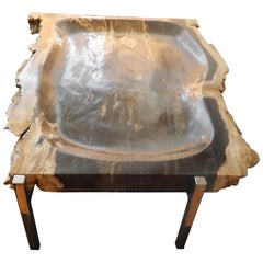 Artisan Crafted Petrified Wood and Chrome Platter