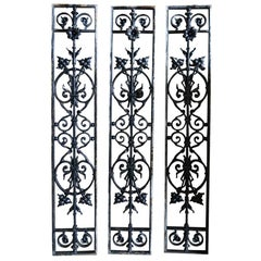 French Iron Windows, Gates Hand-Finished with Flowers, circa 1850, France