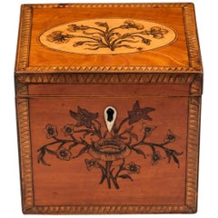Georgian Single Satinwood Tea Caddy, 18th Century