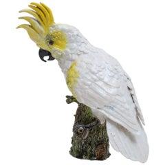Cockatoo Figure