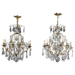 Late 19th Century Crystal and Bronze 8-Light Chandeliers