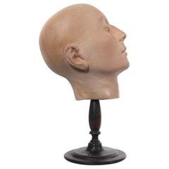 Early Anatomical Half Head Model