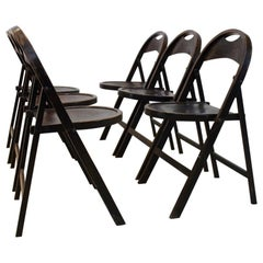 Stock of Solid Wood Bauhaus Folding Chairs with Unique Croco Woodprint, Thonet