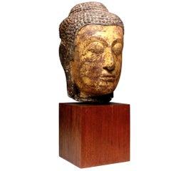 Large 14th-15th Century Thai Sandstone and Gold Leaf Buddha Head