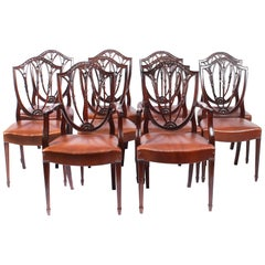 Antique Set of 10 English Hepplewhite Shield Back Dining Chairs 19th Century