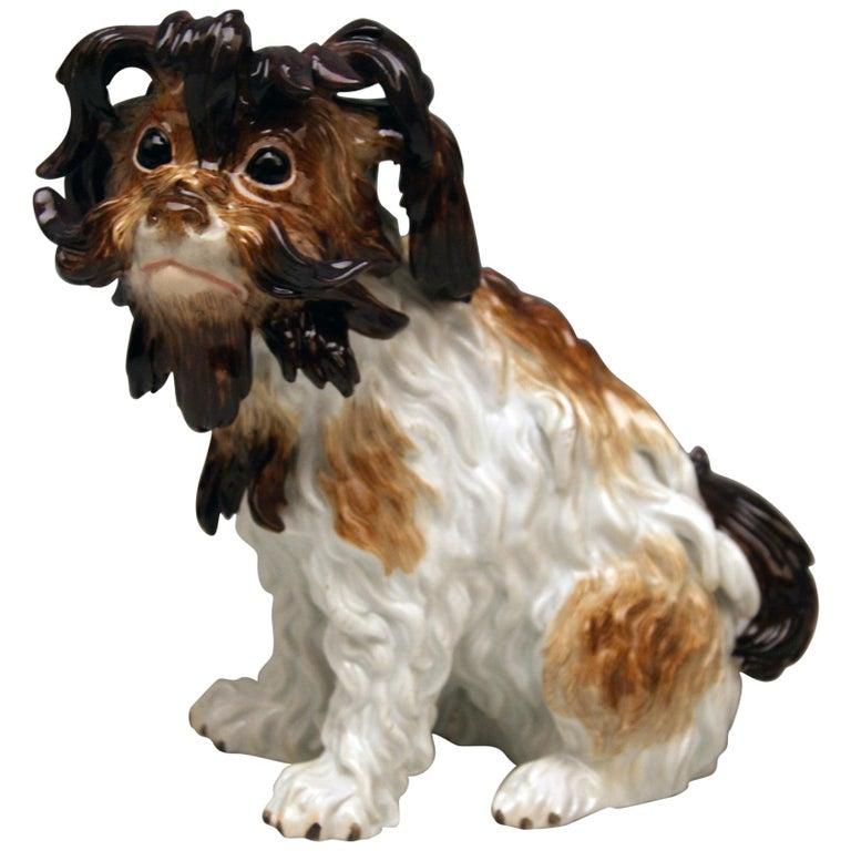Meissen Bolognese Dog Model 2880 by Johann Joachim Kaendler Made circa 1870 For Sale