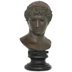 Alva Studios Greco-Roman Bust Reproduction
